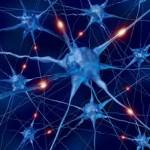 причини за възникване - нервна система