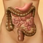 Медицински клип – как ви влияе раздразненото черво